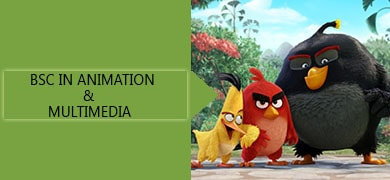 bsc-animation-college-in-bangalore-india
